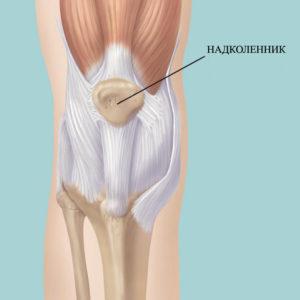a térdízület külső oldalsó ligamentuma a térd teraflex artritisz kezelése