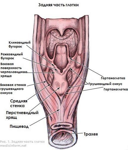 Hypopharyngealis rák