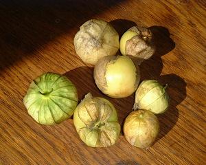 Jak hodować rośliny truskawek i peruwiańskiej pęcherzyków, dając smaczne, pachnące owoce