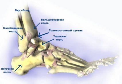 A csontok a lábak kezelésekor jönnek ki az ízületekből - larafuggony.hu