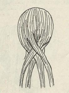 Уроки плетіння косичок для маленьких модниць
