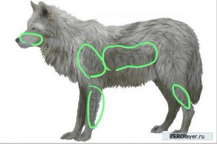 Jak szybko narysować realistyczną wełnę przy pomocy Photoshopa - lekcje photoshopa, lekcje photoshopa,