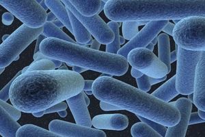 التكوين الغازي في الأمعاء يسبب و يعالج ، قوي ، كيف نتخلص
