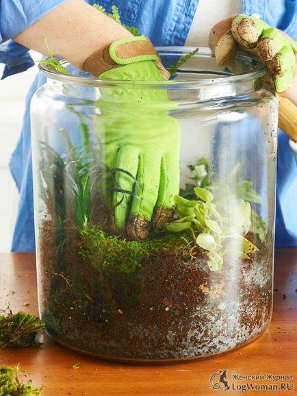Jak zrobić terrarium dla kwiatów