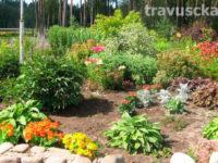 Jak zarabiać w swoim ogrodzie