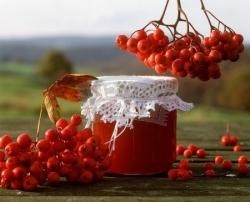 Jak użyteczny jest czerwony sok z ashberry - najlepszy wybór online