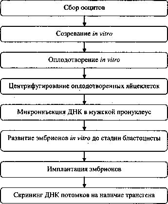 ГМД тваринного походження