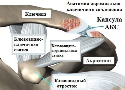 Simptome De Osteoartrita Articulară