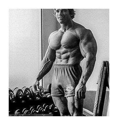 Розминка м'язів рук і плечей перед тренуванням - блог про бодібілдинг