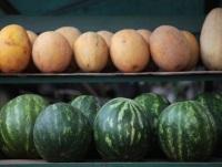 Кавун як ліки які хвороби допомагає лікувати червона ягода, правильне харчування, здоров'я,