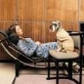 Які іграшки для цуценят краще, догляд за кішками і догляд за собаками