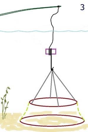 Способи лову раків раколовки пастками
