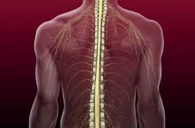 Jak przywrócić zdrowie kręgosłupa