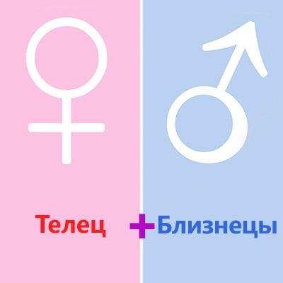 Женщине деве нравится развитый интеллект близнеца и его ловкость в решении любых проблем.