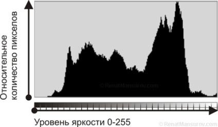 Ренат Мансуров, що таке гістограма яскравості і як їй користуватись - просто про складне