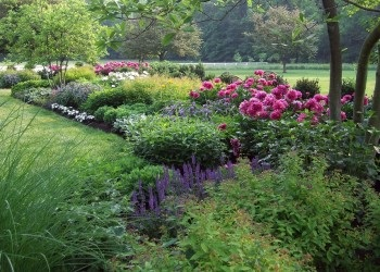 Миксбордер, улюблені квіти