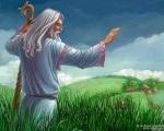 Отруйні трави ознаки отруєння і перша допомога - суспільство таємних знань
