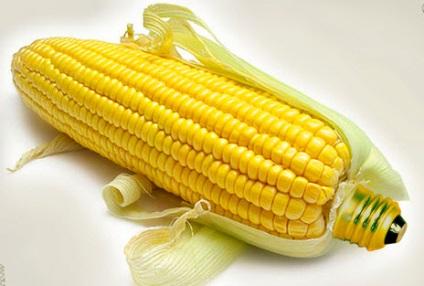 Як виростити кукурудзу