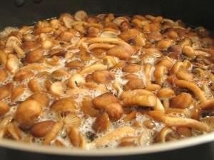 Малосольні гриби секрети приготування з глибини століть
