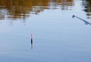 Риболовля на лина поплавковою вудкою снасть і оснащення, підгодовування і наживки