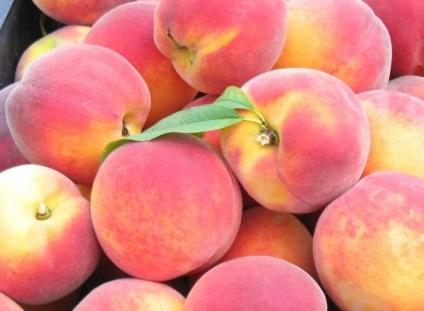 Czy mogę karmić piersią brzoskwinie matki?