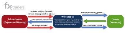 У чому відмінність між white label і introducing broker