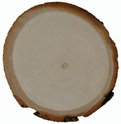Кінський каштан, довідник, лісоматеріали, дерев'яне будівництво