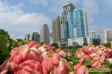 Парк benjakitti в Бангкоку