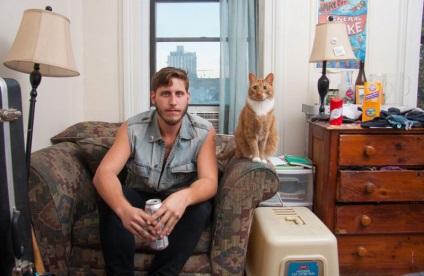Фото кішок, фото кішки, картинки з кішками, фото котів - сторінка 6