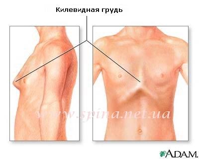 Sanatoriu din regiunea Voronezh pentru tratamentul articula?iilor