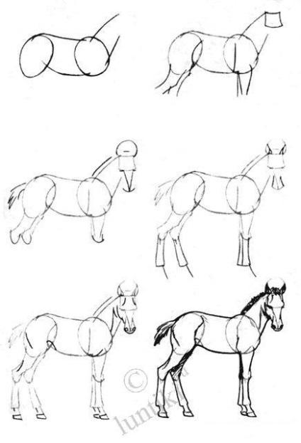 Довідайся! Як поетапно намалювати коня олівцем