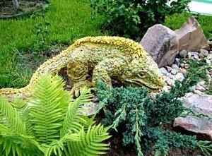 Ідеї для саду своїми руками
