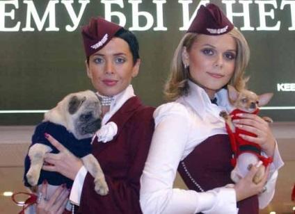 Нездійснена мрія Жанни Фріске, зірки, шоу-бізнес