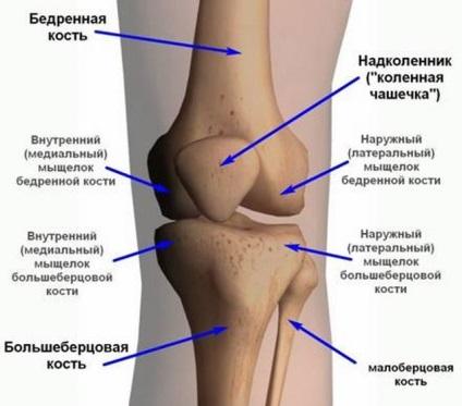 a térd fekvőbeteg kezelése