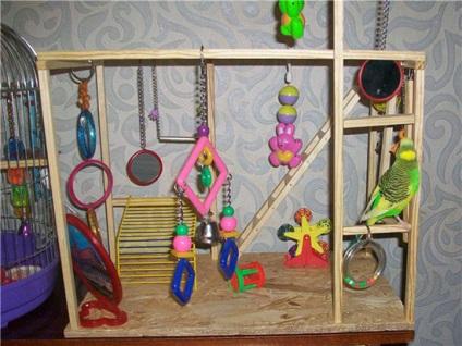 Игрушки волнистым попугаям своими руками