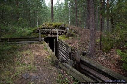 Пристрій переднього краю оборони німців - історія - статті - військова археологія, історія
