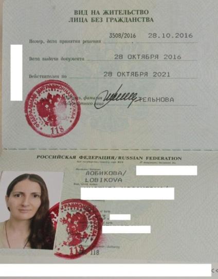 Как сделать документы на гражданство