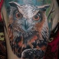 Co Oznacza Tatuaz Sowa