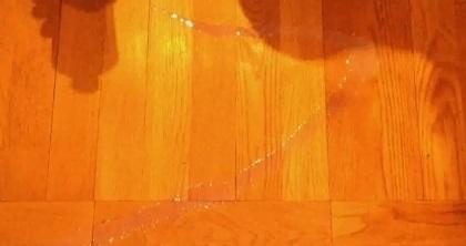 Чем удалить масляные пятна с пола фото
