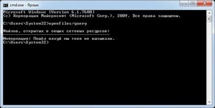 A számítógépről nem dedikált szerver Hogyan lehet ellenőrizni a Windows, hogyan kell letiltani a választ!