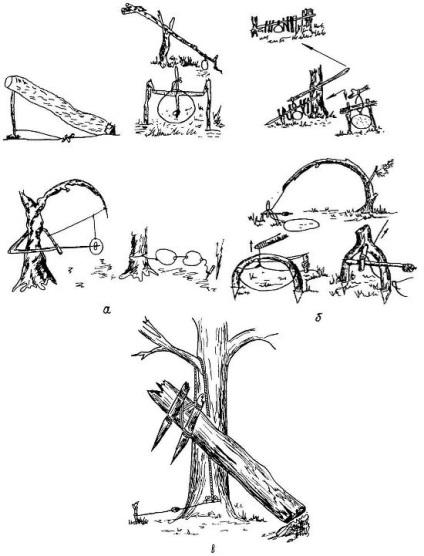 Ловушка на фазана своими руками чертежи 548