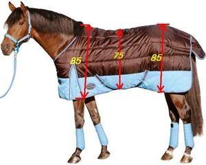 Сшить бинты на лошадь 536
