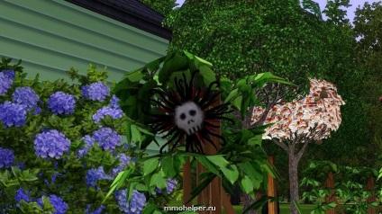 Hol találom a virág a halál The Sims 4