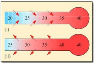 A veszélyes brachycephaly hőszabályozás és a légzés - Miért akar egy férfi kutya