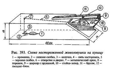 Ловушка для лисы своими руками из сетки чертеж 71
