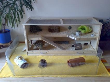 Топтуха для ловли рыбы своими руками 15