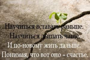 Крылатые слова из сказок пушкина 49