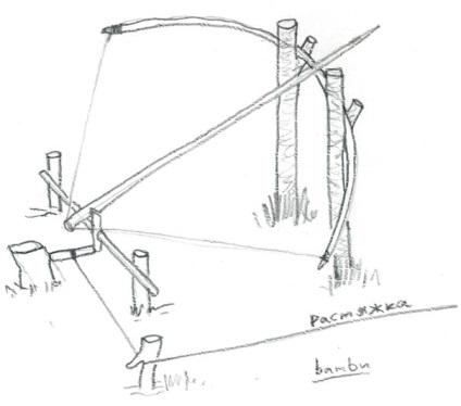 Ловушка на фазана своими руками чертежи 215