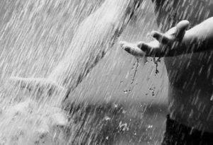 nedves álmok