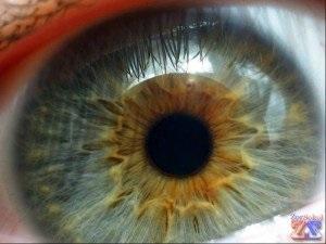 retina atrófia okok és a kezelés